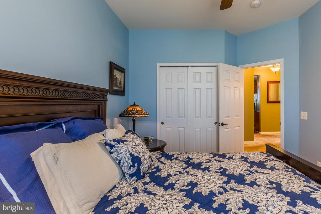 Second Bedroom - 16230 TIMID CREEK CT, DUMFRIES