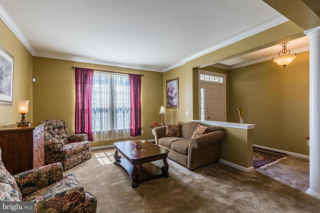Living Room - 16230 TIMID CREEK CT, DUMFRIES