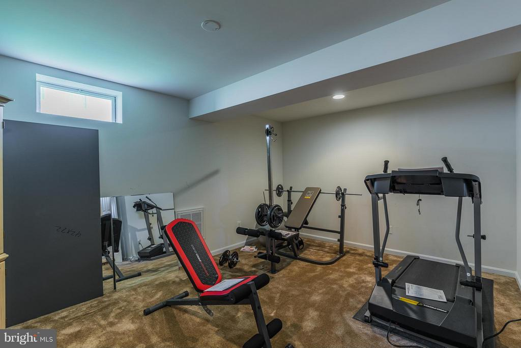 Exercise Room - 16230 TIMID CREEK CT, DUMFRIES