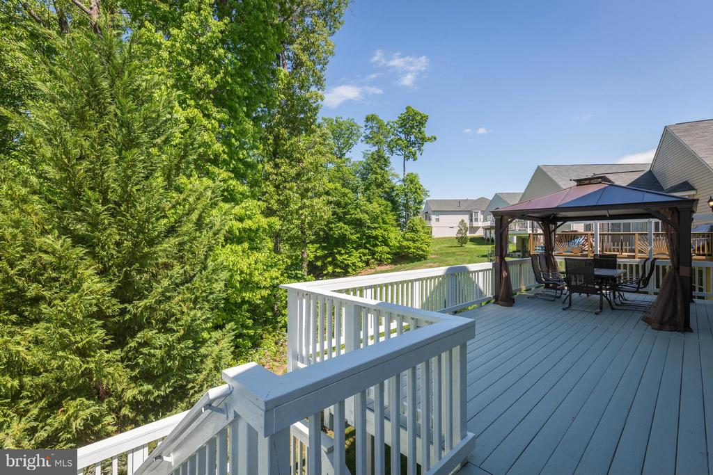 Deck Backing to Trees - 16230 TIMID CREEK CT, DUMFRIES