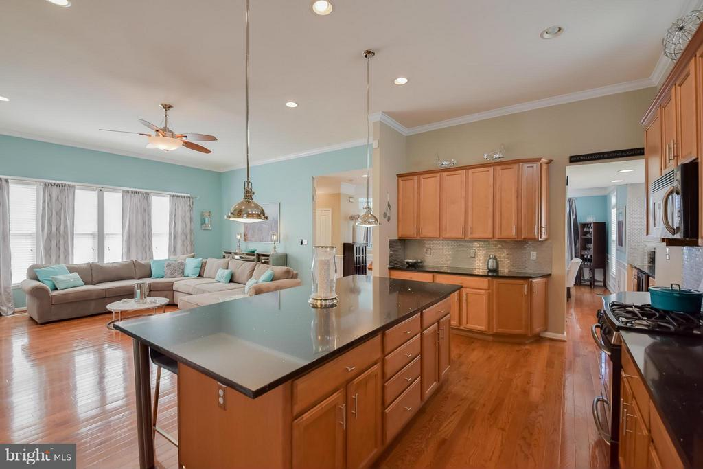 Kitchen open to Living Room - 25046 MINERAL SPRINGS CIR, ALDIE