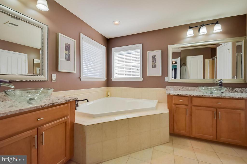 Master Bathroom - 25046 MINERAL SPRINGS CIR, ALDIE