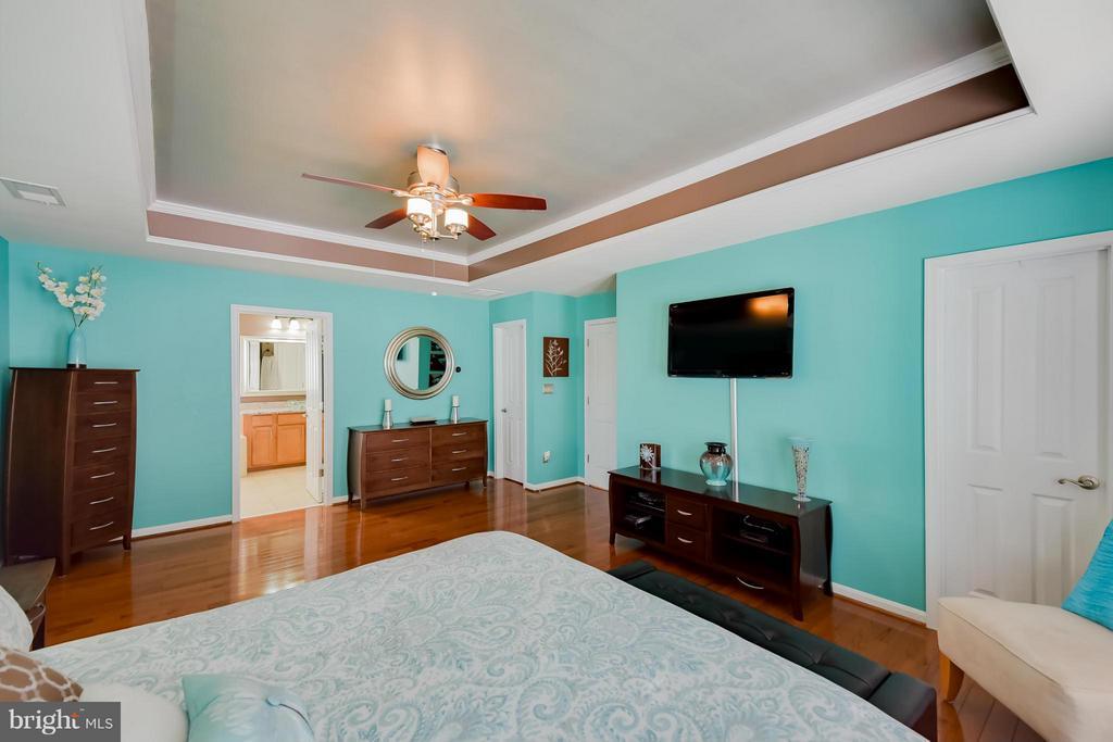 Master Bedroom - 25046 MINERAL SPRINGS CIR, ALDIE
