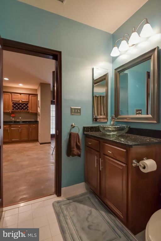 Full Bathroom in Basement - 25046 MINERAL SPRINGS CIR, ALDIE