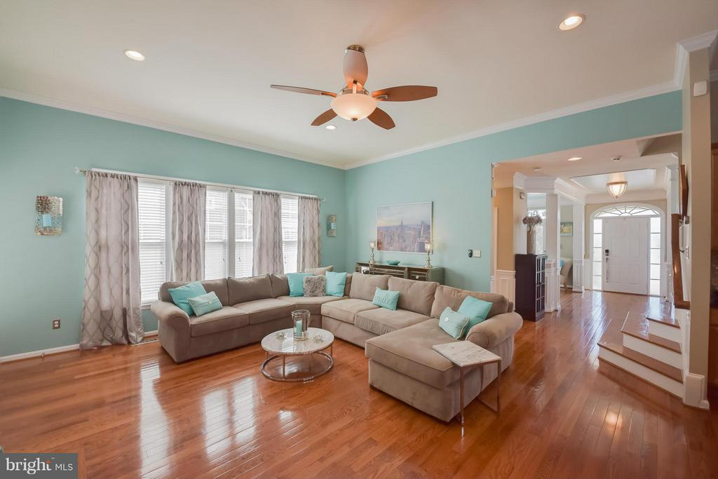 Living Room with Crown Molding - 25046 MINERAL SPRINGS CIR, ALDIE