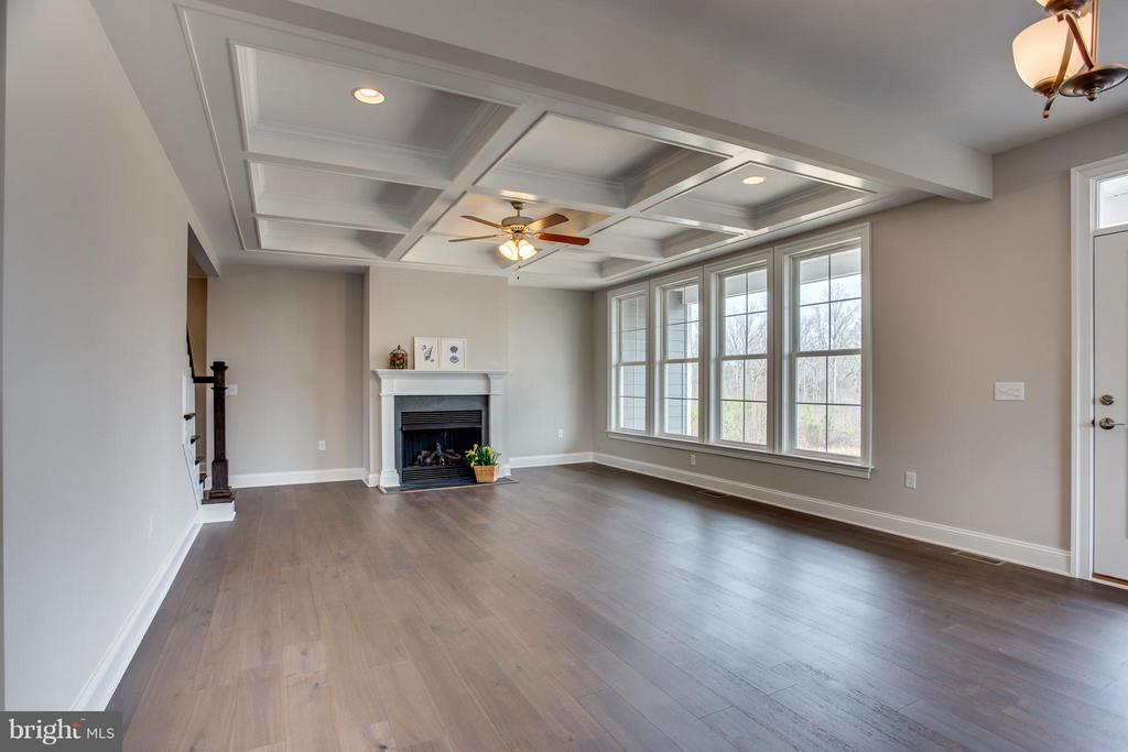 Family Room - LOT 45 DOWNTON AVENUE, SPOTSYLVANIA