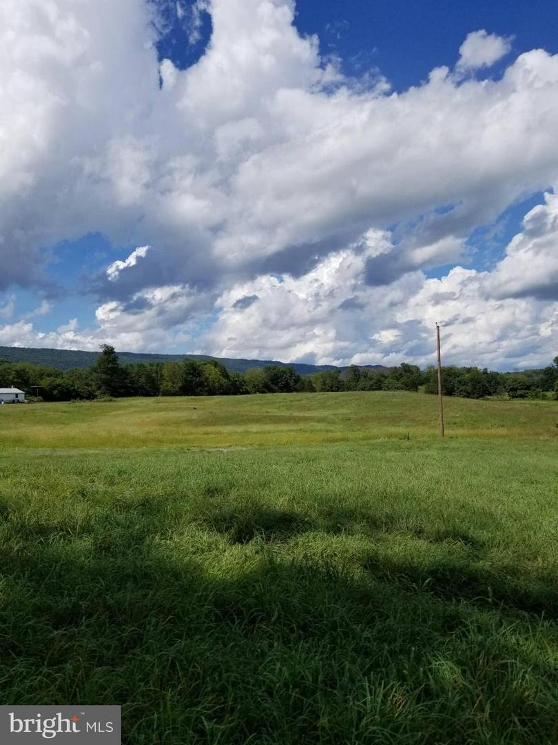 Land for Sale at Not On File Toms Brook, Virginia 22660 United States
