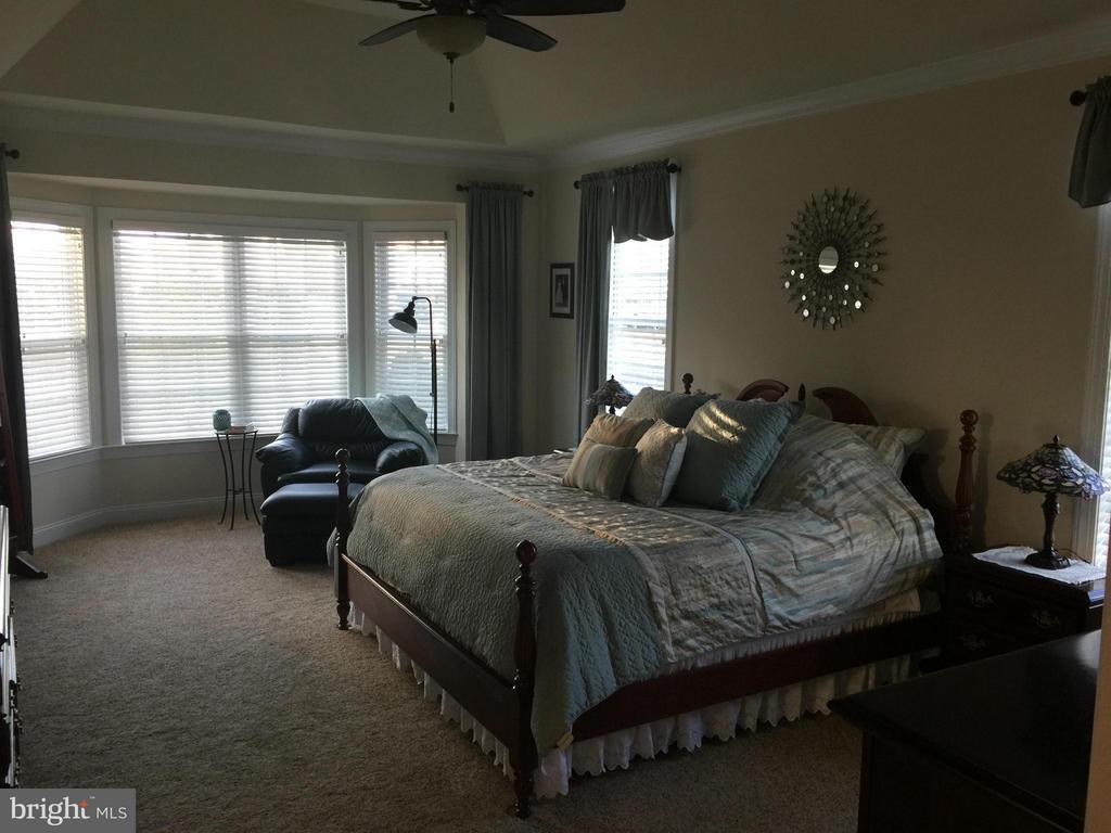 Bedroom (Master) - 4600 FREEDMEN LN, HAYMARKET