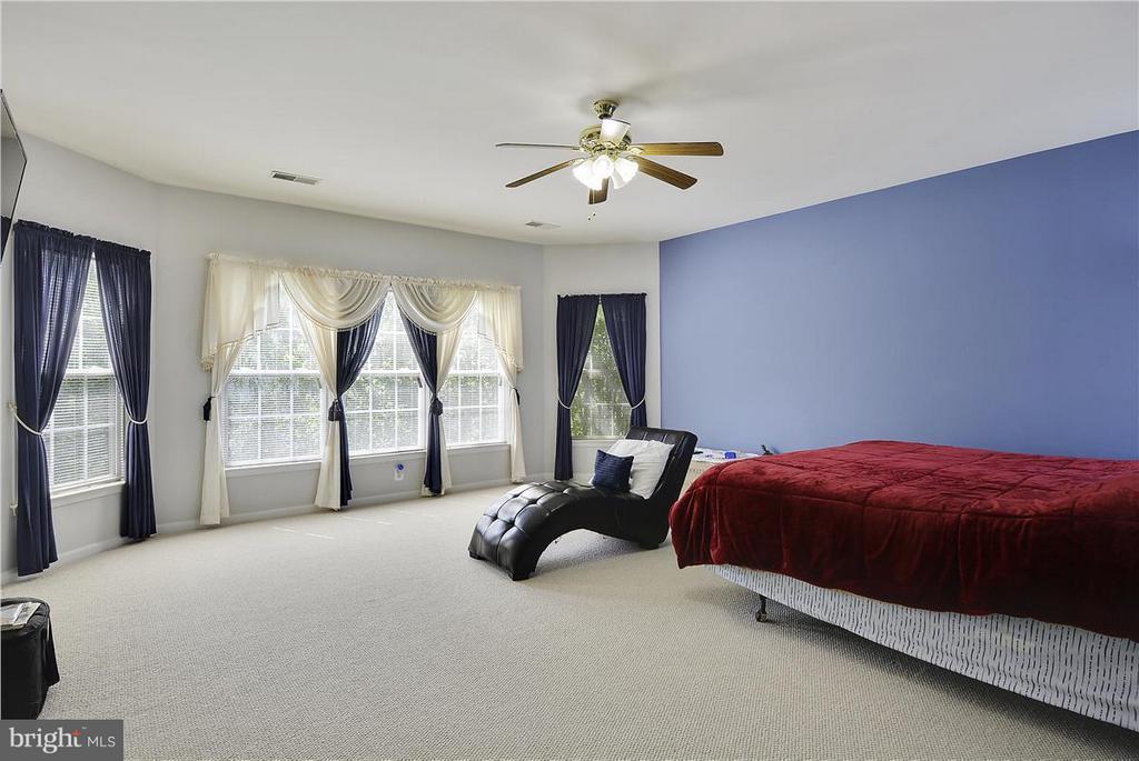 Master Bedroom - 21935 WINDOVER DR, BROADLANDS