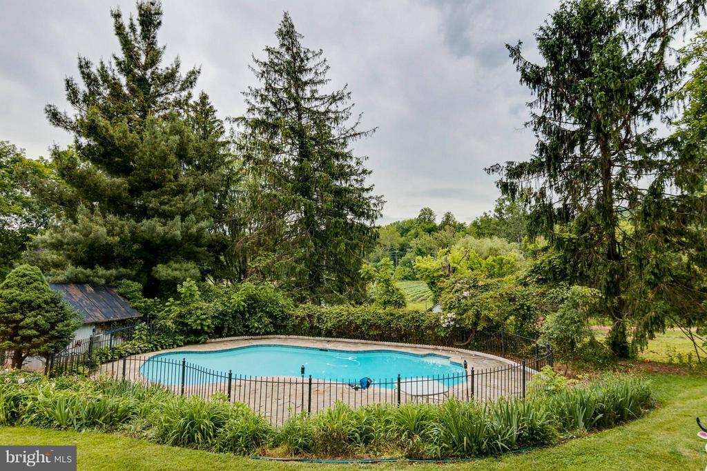 Deep In-Ground Pool - 36929 GAVER MILL RD, PURCELLVILLE