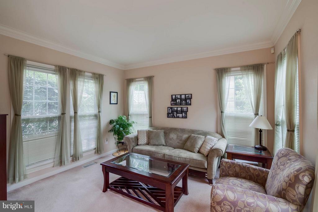 Living Room - 20685 PARKSIDE CIR, STERLING