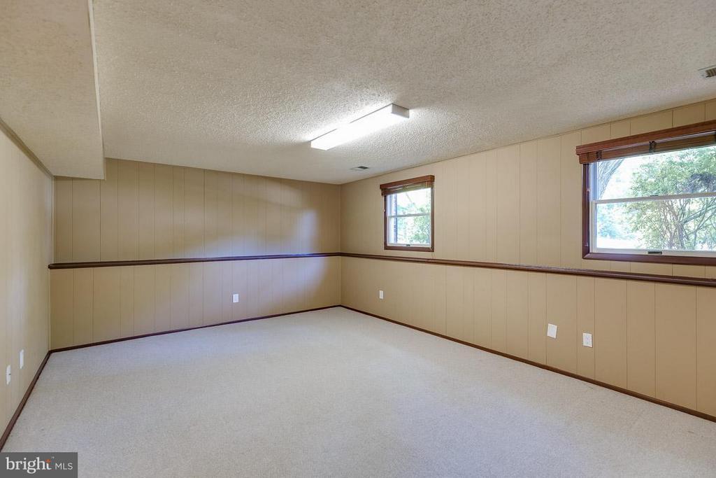 Lower level rec room - 10306 STEAMBOAT LANDING LN, BURKE