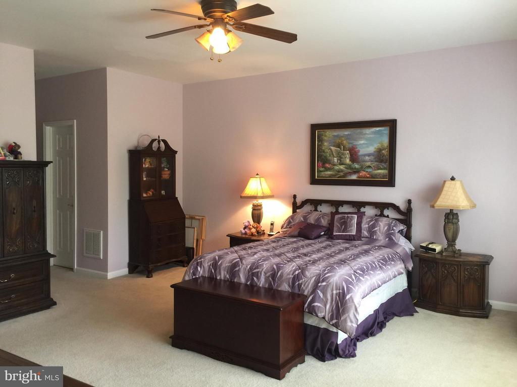 Tranquil Master Suite w/bright windows to backyard - 11117 TRINITY LN, FREDERICKSBURG