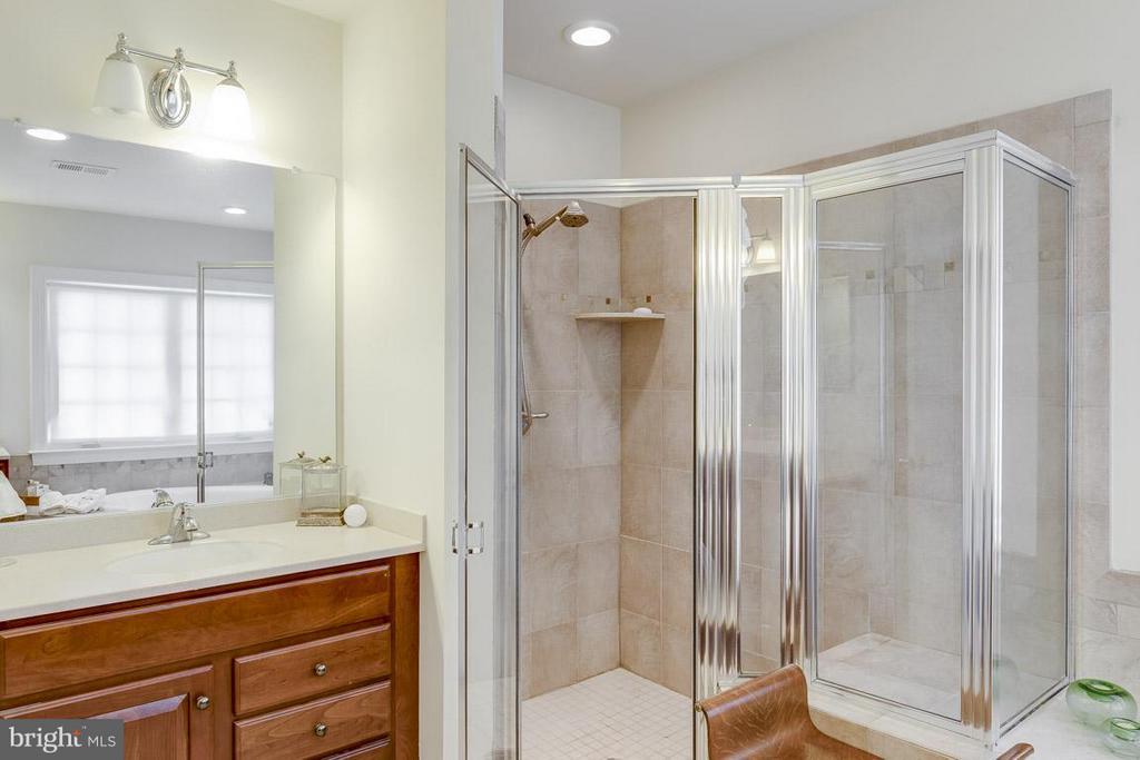 Bath (Master) - 44108 RIVERPOINT DR, LEESBURG