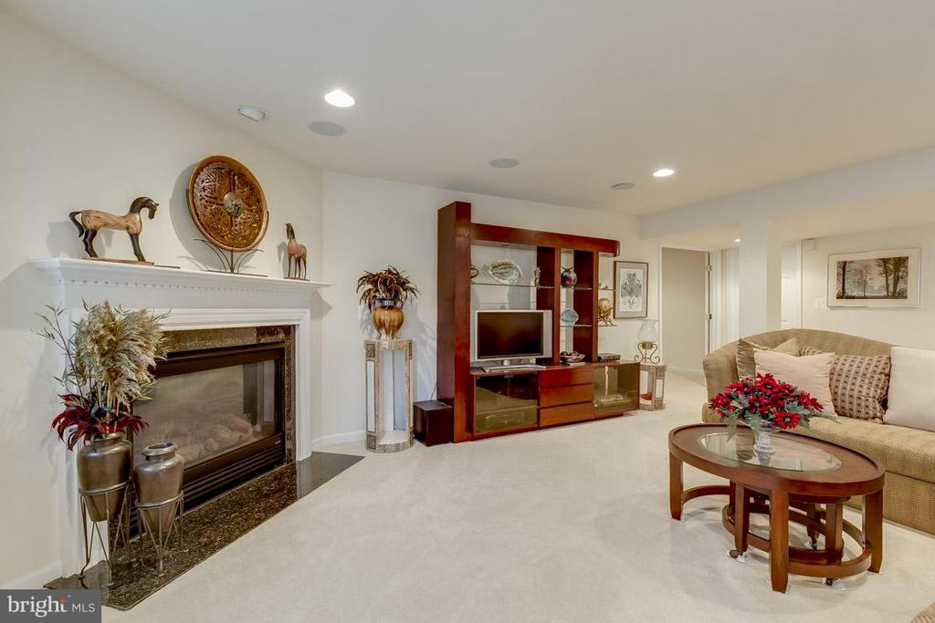 Basement - 44108 RIVERPOINT DR, LEESBURG