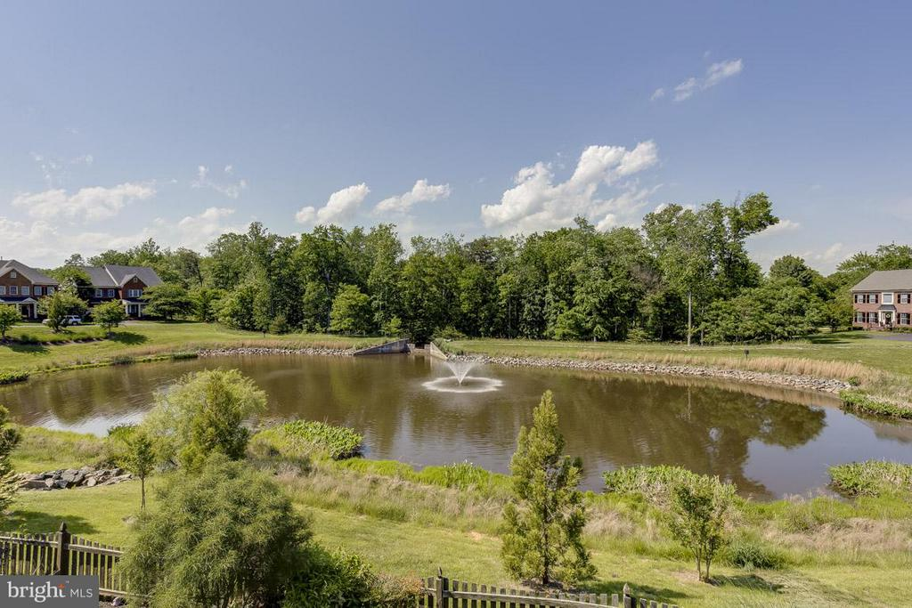 Premium Lot Overlooking Pond w/ Fountain - 44108 RIVERPOINT DR, LEESBURG