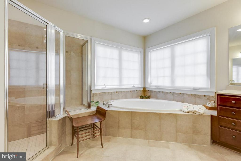 Luxury Master Bath - 44108 RIVERPOINT DR, LEESBURG