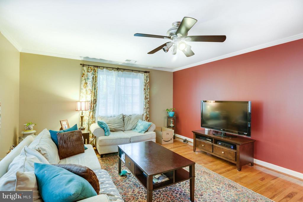 Living Room - 1289 VAN DORN ST, ALEXANDRIA