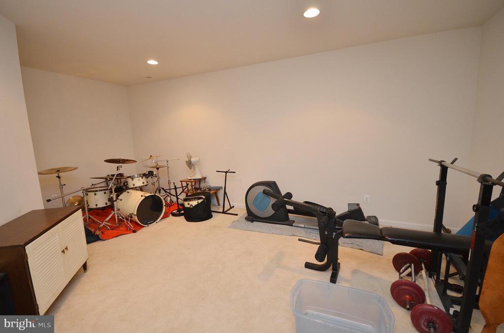 Exercise/Game Room - 43014 PARK CREEK DR, BROADLANDS