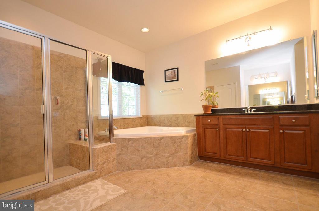 Dual Vanities, Shower and separate soaking tub - 43014 PARK CREEK DR, BROADLANDS