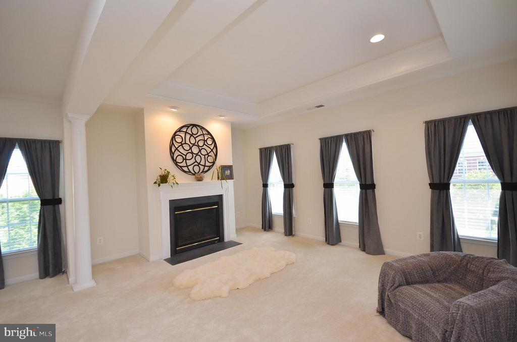 Master Bedroom Sitting Area with Gas Fireplace - 43014 PARK CREEK DR, BROADLANDS