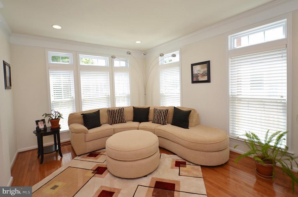 Gleaming Hardwood Flooring in the Living Room - 43014 PARK CREEK DR, BROADLANDS