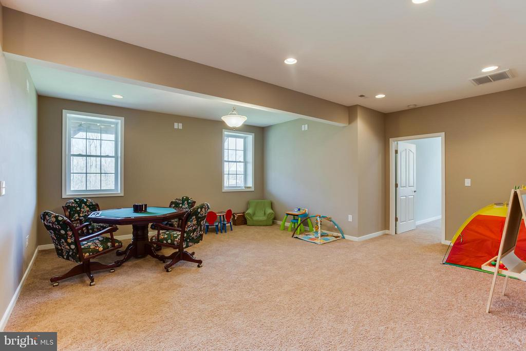 Recreation Room with Natural Light - 98 COACHMAN CIR, STAFFORD