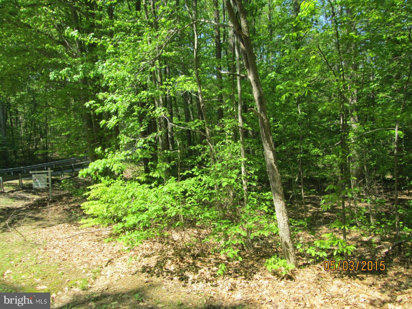Land for Sale at 601 Mill Pond Dr Ruther Glen, Virginia 22546 United States