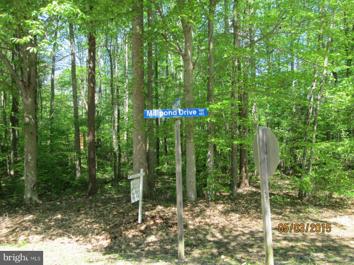 Additional photo for property listing at 601 Mill Pond Dr  Ruther Glen, Virginia 22546 United States
