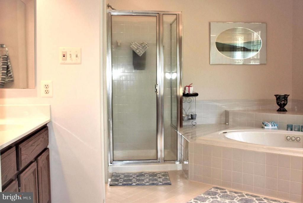 Bath (Master) huge w/separate water closet - 46437 ESTERBROOK CIR, STERLING