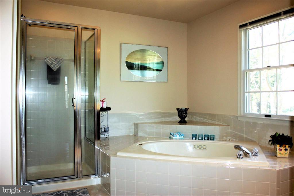 Bath (Master) w/separate water closet - 46437 ESTERBROOK CIR, STERLING