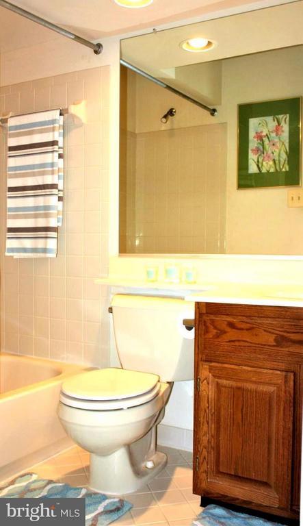 Separate bath in bedroom - 46437 ESTERBROOK CIR, STERLING