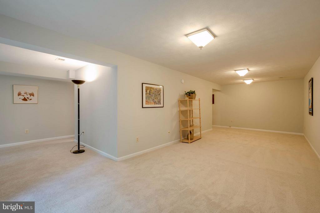Lower level rec room - 12029 SUGARLAND VALLEY DR, HERNDON
