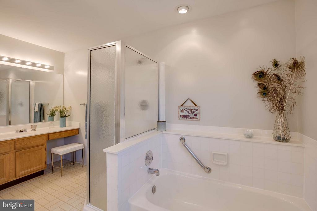 Bath has double vanities & separate shower - 12029 SUGARLAND VALLEY DR, HERNDON