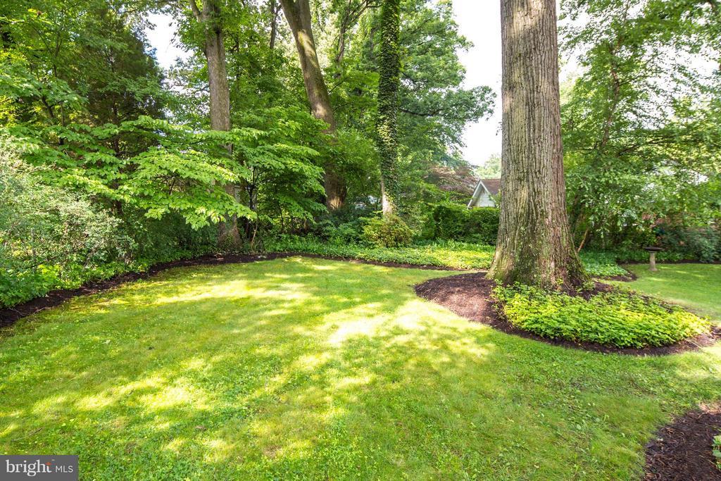 Gorgeous Backyard w/Trees, Lawn & Flowerbeds - 6818 WILLIAMSBURG BLVD, ARLINGTON