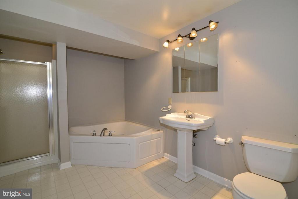 Basement Bath with Jacuzzi tub. - 287 BARKER LN, BLUEMONT