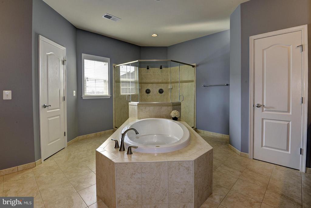 Soaking tub, separate shower + 2 toilets - 16545 LEVADE DR, LEESBURG