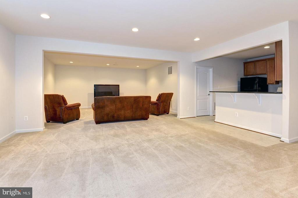 Fully finished basement w/tons of room! - 16545 LEVADE DR, LEESBURG