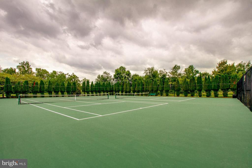 Hit some tennis balls - 2 courts for HOA members - 16545 LEVADE DR, LEESBURG