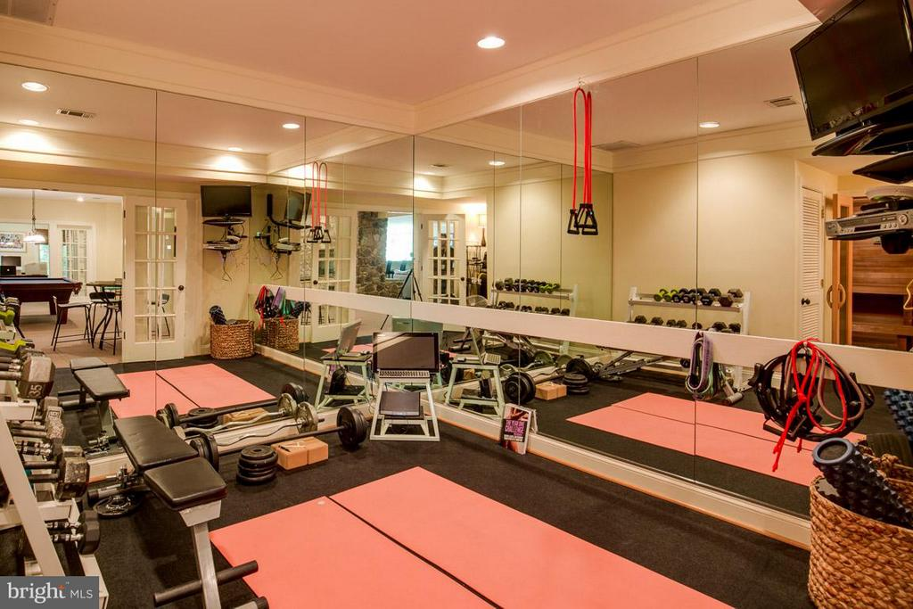 Gym - 43319 BUTTERFIELD CT, ASHBURN