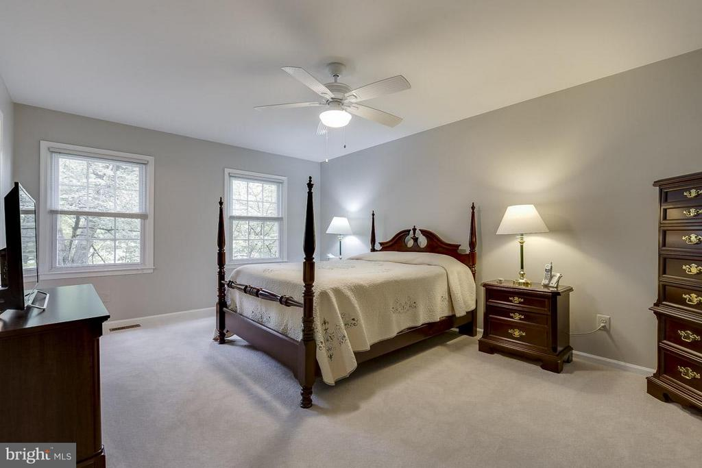 Light and Bright Master Bedroom with En-Suite Bath - 6207 GOODING POND CT, BURKE