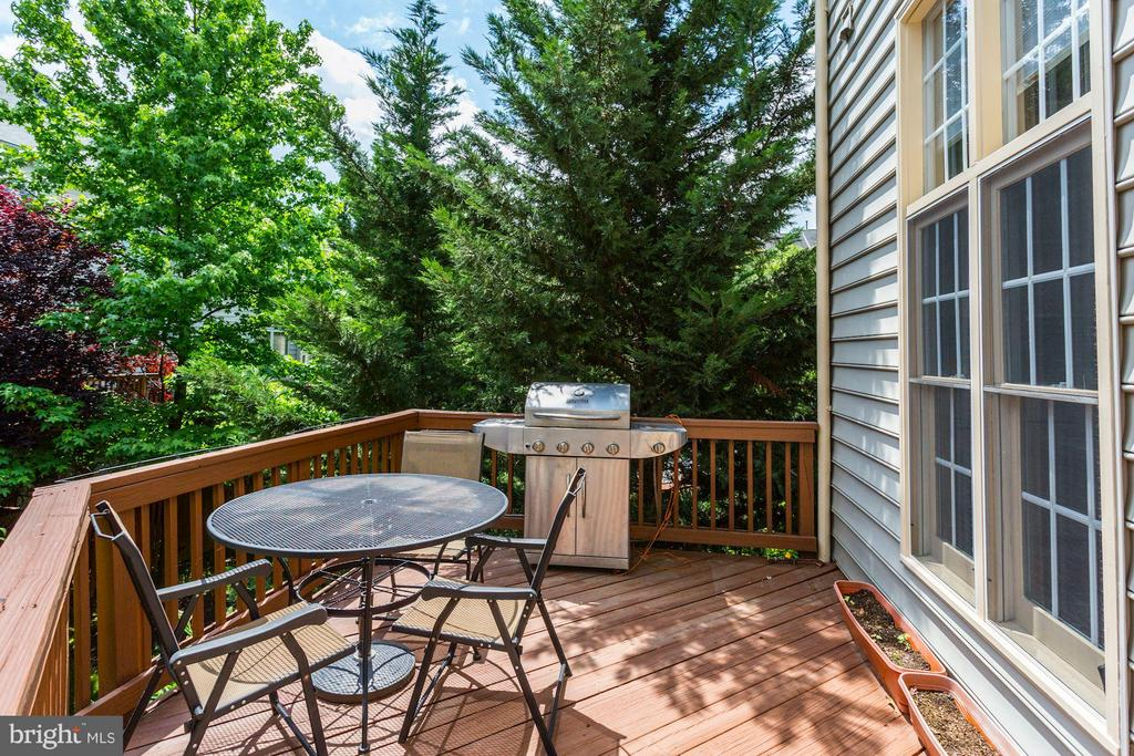 Great Deck with privacy off familyroom - 5237 BESSLEY PL, ALEXANDRIA