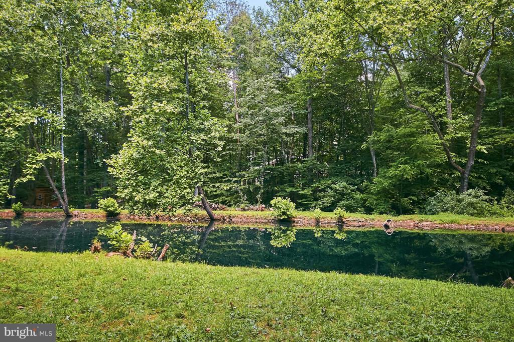 Creek-fed pond stocked with fish. - 6704 BRIARCROFT ST, CLIFTON