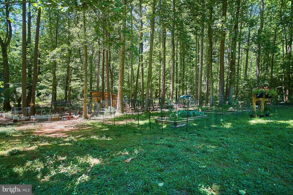 Space for gardens, chickens, enjoyment of nature. - 6704 BRIARCROFT ST, CLIFTON