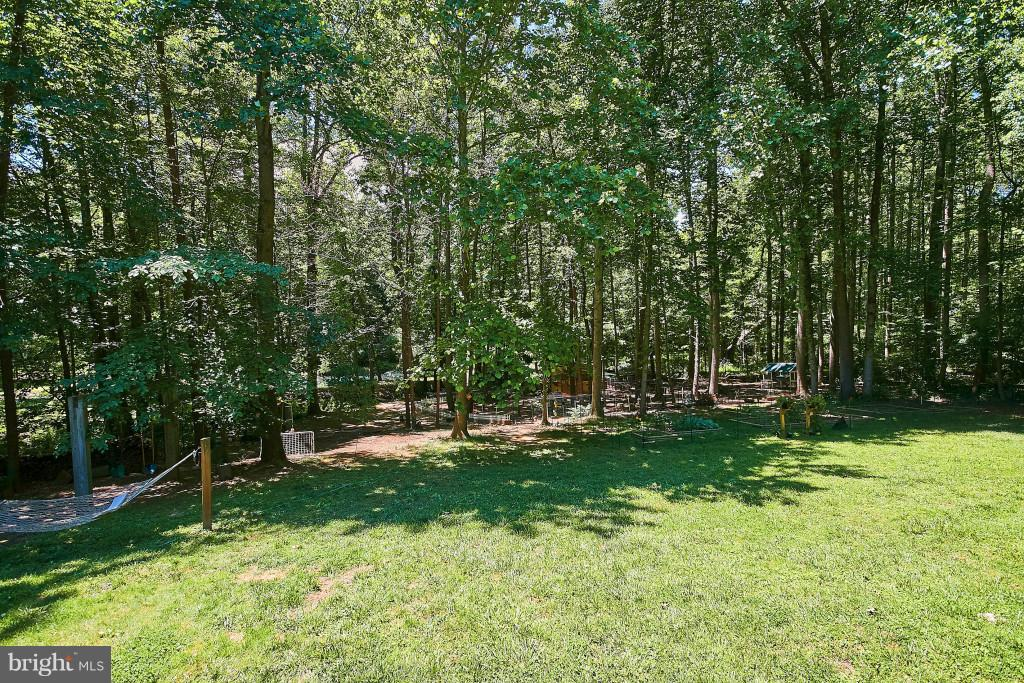 Relax on the hammock or swings - 6704 BRIARCROFT ST, CLIFTON