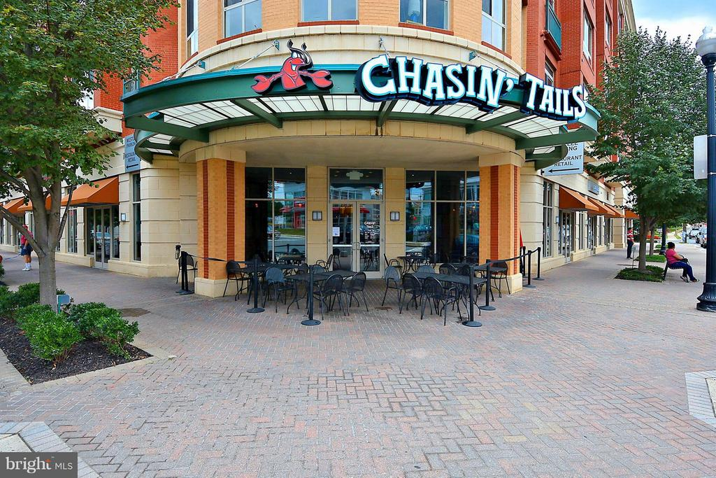 Chasing Tails is in your building - 2200 WESTMORELAND ST #207, ARLINGTON