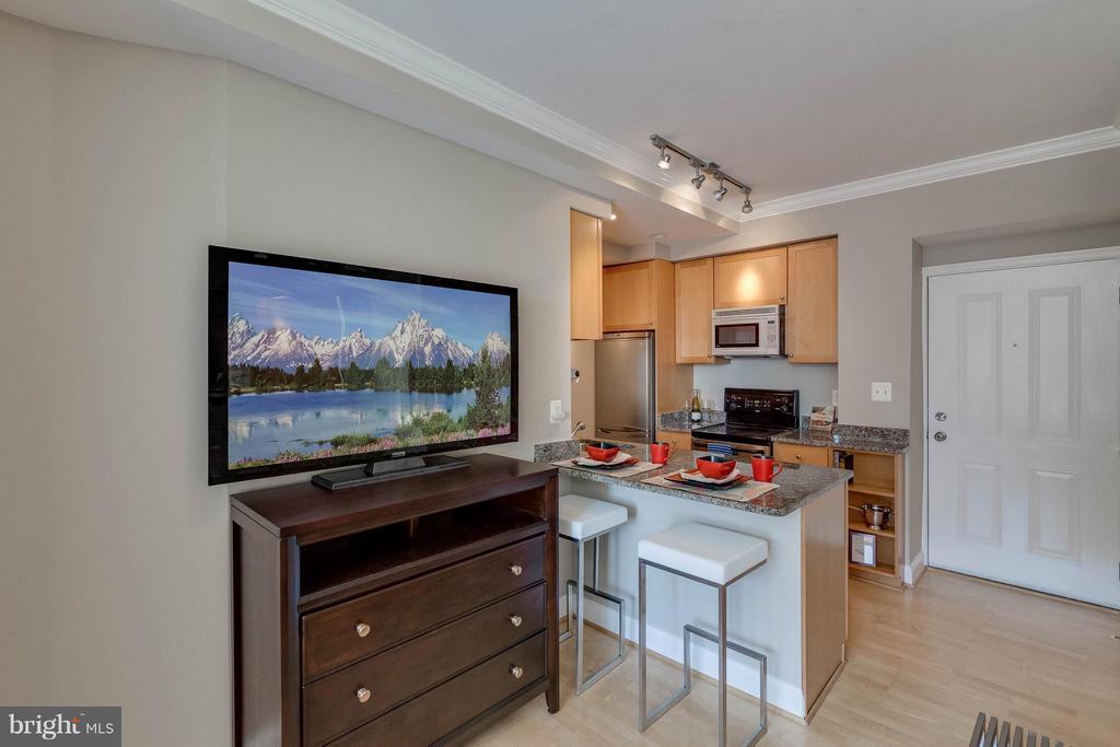 Living Room - 1701 16TH ST NW #614, WASHINGTON
