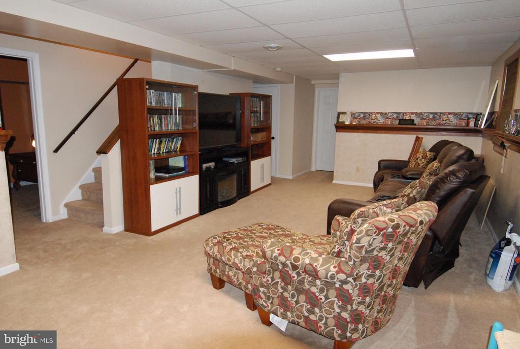 Basement Rec Room - 10817 WOODLAND DR, FREDERICKSBURG