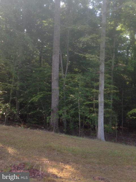 Land for Sale at 4805 Tortoise Ct Waldorf, Maryland 20601 United States