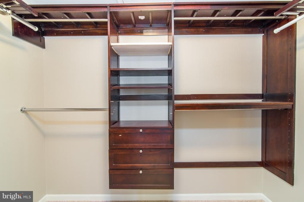 Build-ins in MBR Closet - 5292 SANDYFORD ST, ALEXANDRIA